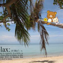 freetoedit relax relaxtime timerelax relaxing ecrelaxwithrilakkuma