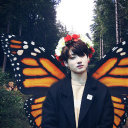 jungkook freetoedit fae fairy magic