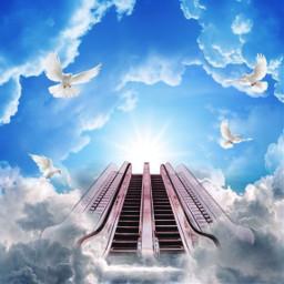 freetoedit stairwaytoheaven ircescalatorstoheaven escalatorstoheaven