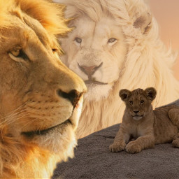 freetoedit lion life lionking wattpadcover