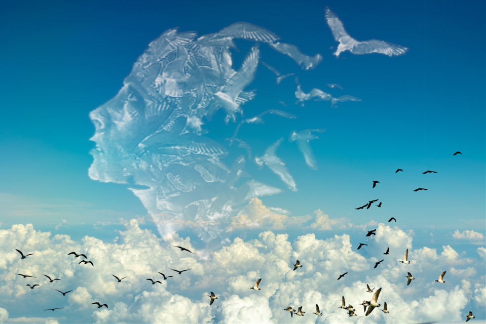 #freetoedit #sky #clouds #woman #face #birds #surrealism