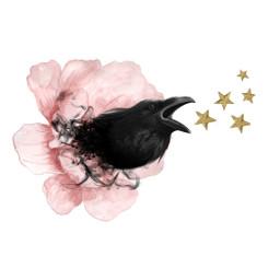 freetoedit stars raven flower thursday