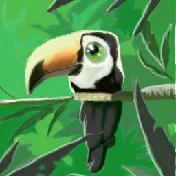 freetoedit dcjungles jungles