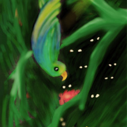 freetoedit jungle bird dcjungles painting