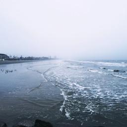 beach ocean blue mood seagulls