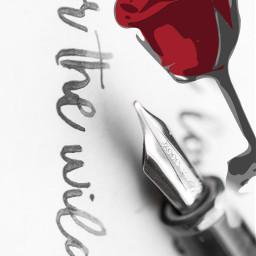freetoedit rose calligraphy calligraphypen wild