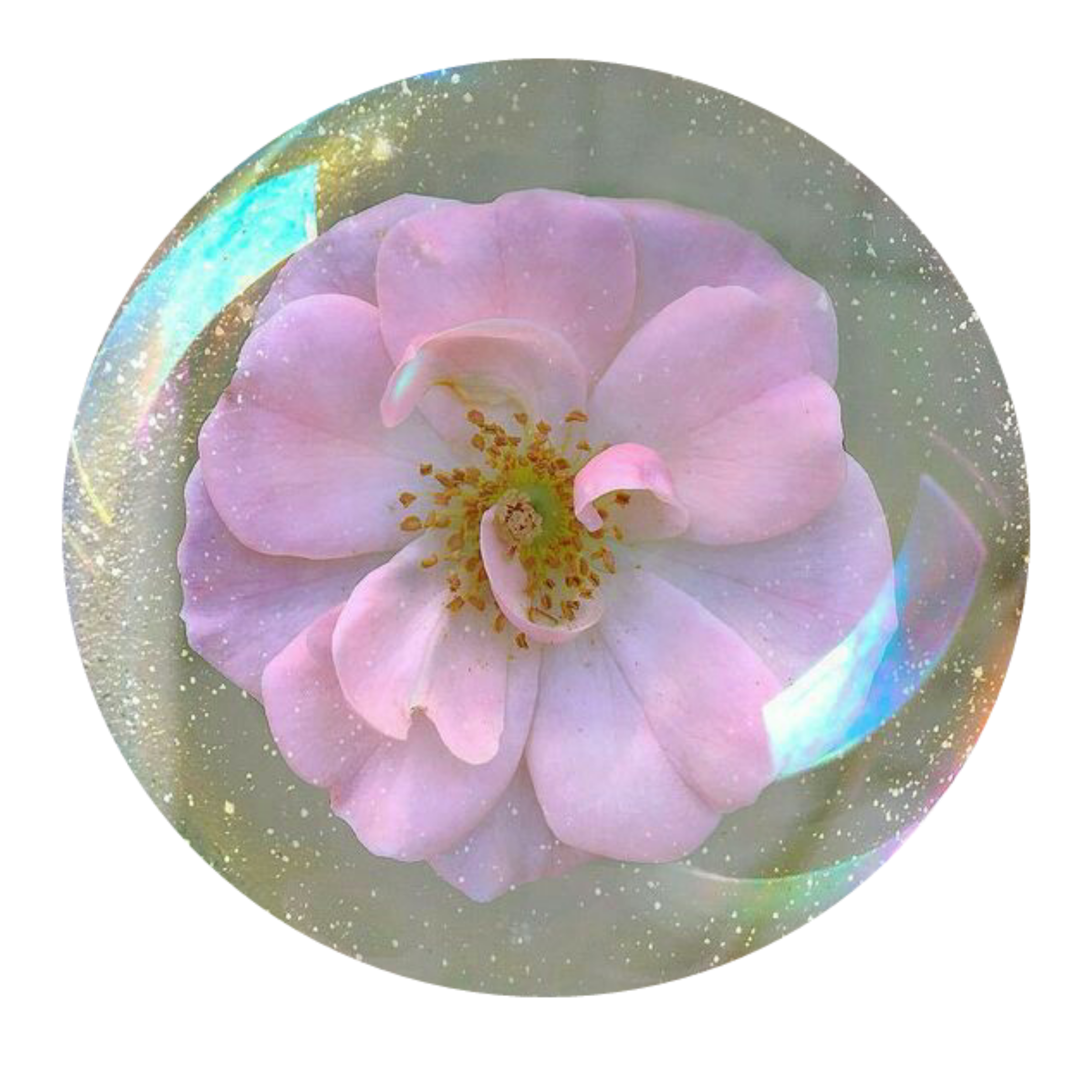 Aesthetic Tumblr Flower Icon Iconbase Pink Sticker