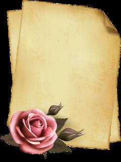 ftestickers rose paper parchment vintage freetoedit