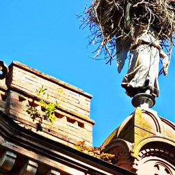 @csefi historic architecture stork