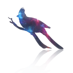 ftestickers fantasyart bird galaxy doubleexposure freetoedit