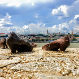 photography cityphotography budapest monument shoes