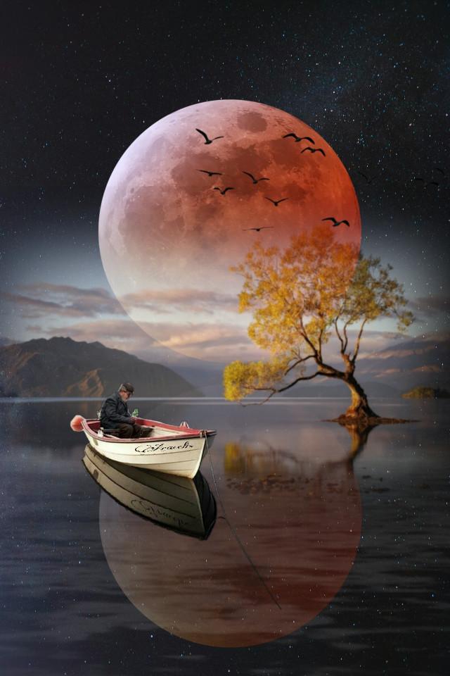 Hola buenas noches!🙋 Hi good night!🙋  #freetoedit #fanyasy #myedit #editedbyme #refletion #fantasy_art #fantasyart #moon #forest #creativity #araceliss #be_creative