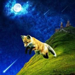 fantasyart fantasy fox shootingstars fullmoon