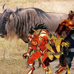 freetoedit wildebeest dc teentitanssouth teentitans