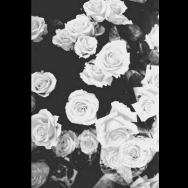 #background #backgrounds #white #black #blackandwhite #rose #roses #vintage #фон #фоны #белый #чёрный #черный #чернобелое #чернобелый #роза #розы #винтаж