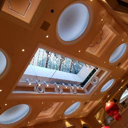freetoedit ceiling venetian hotel casino