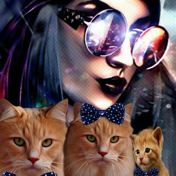 freetoedit kittylove cats woman cat irckittylove