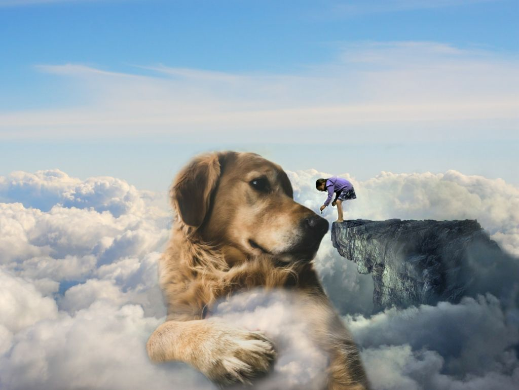 #freetoedit #dog #girl #mountain #clouds #surreal #surrealism #fantasy #animal #pet #sky