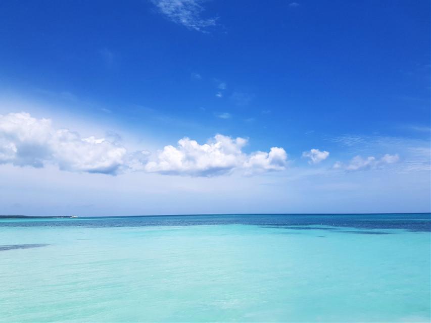 #freetoedit #Repubblicadominicana #sea  #dominicanrepublic #republicadominicana #santodomingo #puntacana #rd #newyork #dominicana #dominican #dr #miami #latino #love #nyc #like #caribbean #fashion #vacation #latina #puertorico #beach #travel #brtweekend #a #laromana #music #puertoplata #brooklyn #bronx #bayahibe