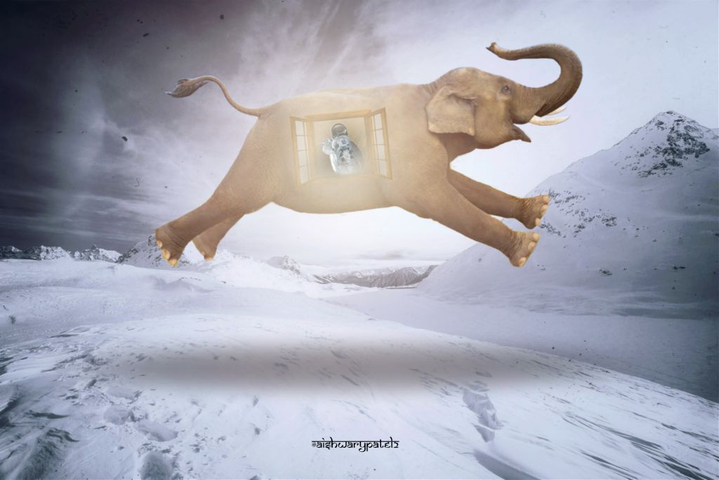 A window            #freetoedit#window#elephant#flying#levitating#surreal#light#rays#astronaut#ice#snow#mountain#manipulation