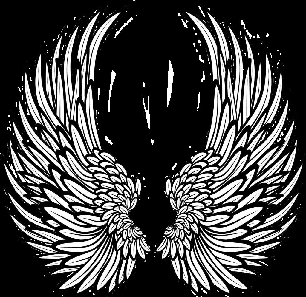 #angelwings #wings