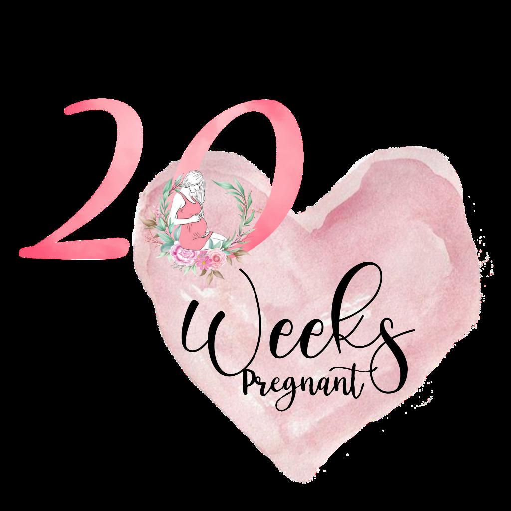 #20 #20weeks #20weekspregnant #freetoedit #freetouse #mamalebenat #silhouette #love #happyness #inlove #quotes #text #family #forever #pink #girl #mom #mama #woman #women #pregnancy #baby #pregnant #schwangerschaft #ssw #pregnantlife #maternityshoot #mamasgirl #girlpower #itsagirl #teamrosa #heart