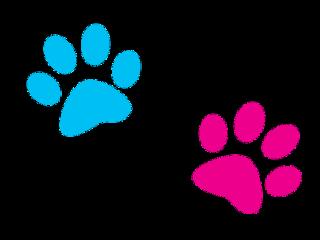 paws paw blue pink print freetoedit
