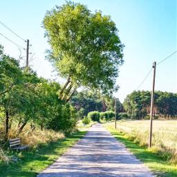 freetoedit iloveit outdoors nature naturelover