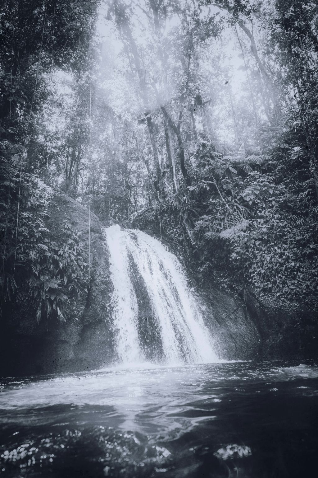#freetoedit #waterfall #water #splash #wood #trunk #forest #trees #wood #arbre #tree #wood #woods #landscape #sky #ciel #woodlands #darkness #light #landscapes #photography #outdoors #earth #vegetation #grass #leaf #shade #leaves #winter #shadow #shadows #view #vista #blackandwhite #nature #outdoors #outdoor #natural #photo #photographer #photograph #pic #photos #picsart #instagram #pics