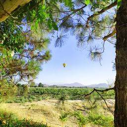 freetoedit hotairballoon winery