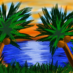 oasis dcoasisinthedesert oasisinthedesert