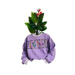 freetoedit plant bushbrain smile
