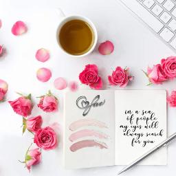 freetoedit pause caf fleur rose