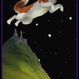 freetoedit fantasyart fantasy starrysky starrynight