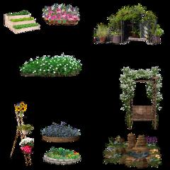 outdoors plants flowers freetoedit