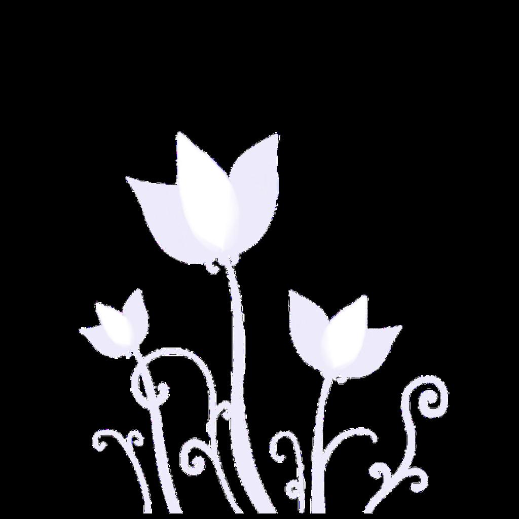 #ftestickers #fantasyart #flowers #transparent #white