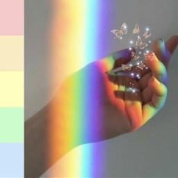 creacion magica mariposas🦋 arcoiris brillos freetoedit