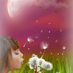 freetoedit summervibes girl dandelions cute