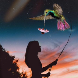 freetoedit summertime surreal editedbyme picsarteffects ircsummersunset