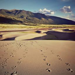 greatsanddunes desert sand usa