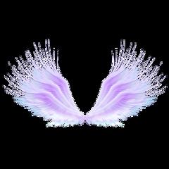 ftestickers fantasyart wings colorful pastelcolors freetoedit