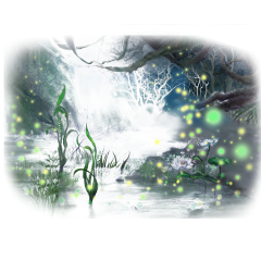 ftestickers fantasyart forest fairylights fireflies freetoedit