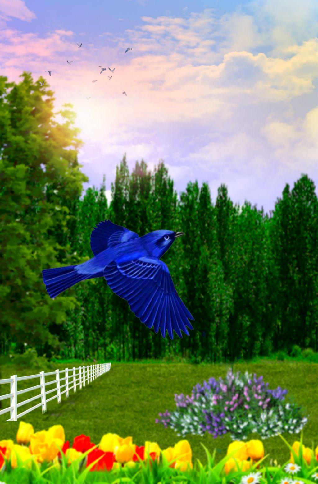 #freetoedit #nature #landscape #garden #forest #skylovers #skyporn #naturesbeauty #colorful #colorlove #picsarteffects #lensflare #editstepbystep #myedit #madewithpicsart