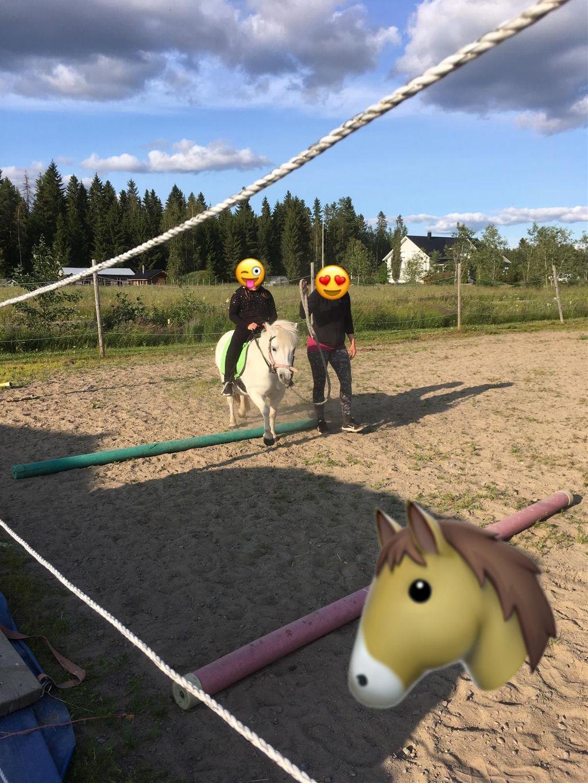 Fi you like Reding a horse? I like so much!♡
