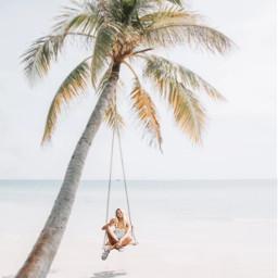 freetoedit summer girl fille palmier ircsnacktime