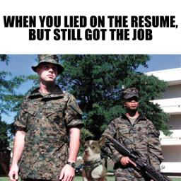 lying jobhunting jobinterview gotthejob