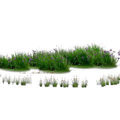 ftestickers landscaping grass groundcover flowers freetoedit