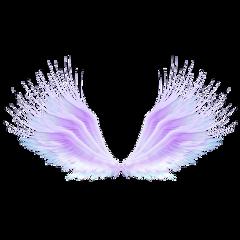 tumblr fantasy fly blue purple freetoedit