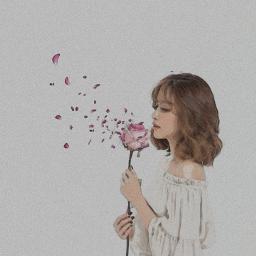 freetoedit girl petal rose pink