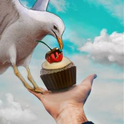 freetoedit vipshoutout edit hand cupcake